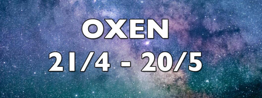 2-oxen-horoskop-vecka-24-2018