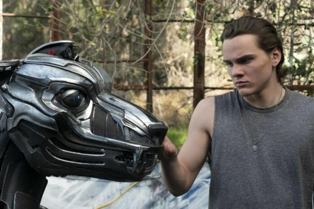 En bild ur filmen A-X-L, som har premiär på Viaplay den 3 september.