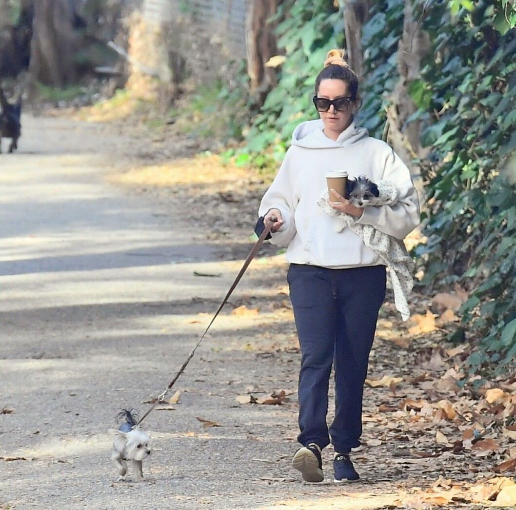 Ashley Tisdale med hundarna Ziggy och Sushi Sue