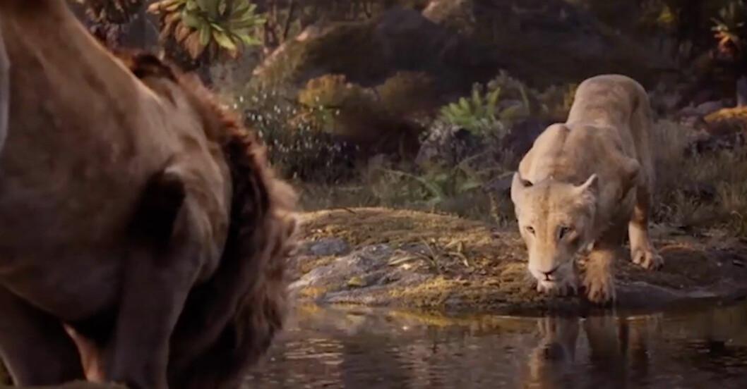 Beyonce i Lejonkungen