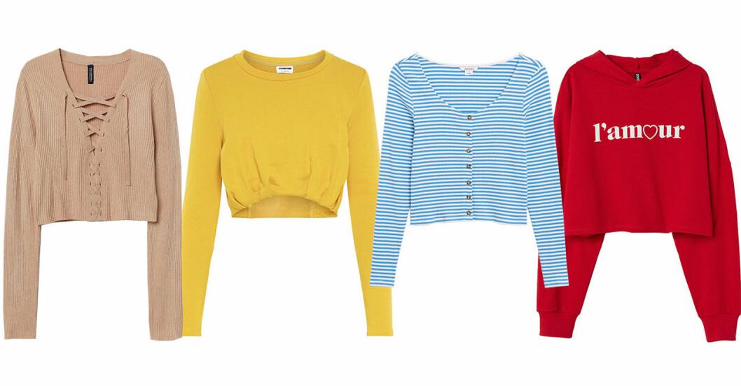 Croppade tröjor till våren 2019