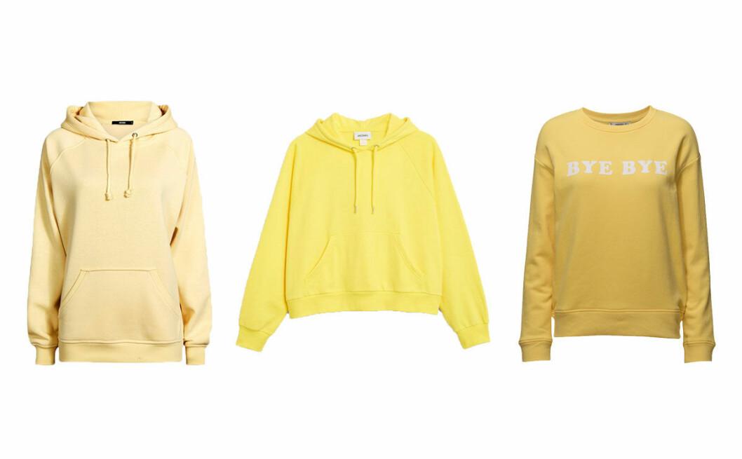 gula-hoodies-2018