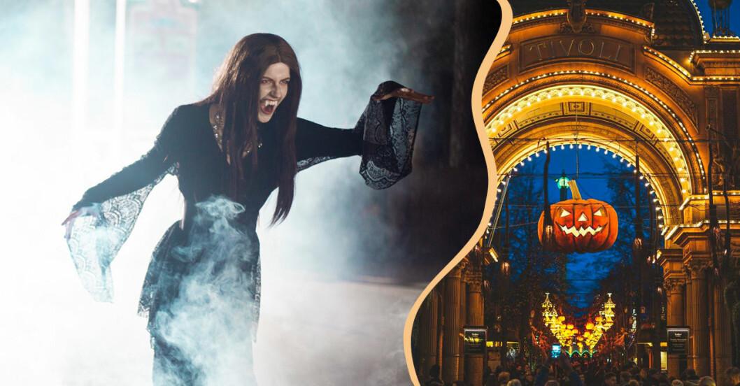 Halloween på Tivoli och Kolmården