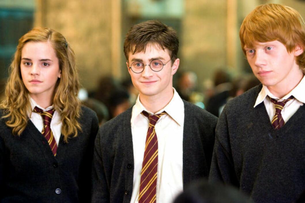 Hermione Granger, Harry Potter och Ron Weasley