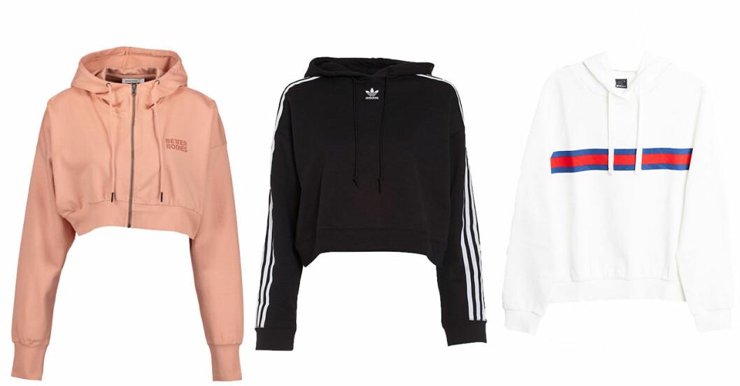 hoodies-host-2018