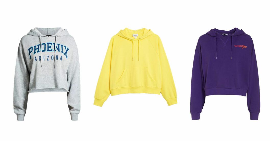 hoodies-host-2018-2