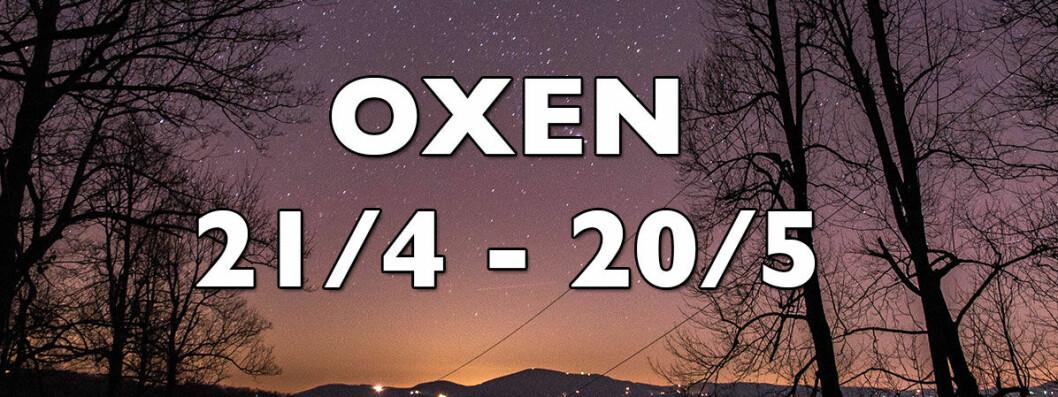 Horoskop-hosten-2018-oxen