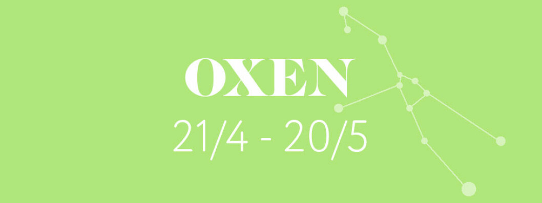 horoskop-vecka-52-2018-OXEN
