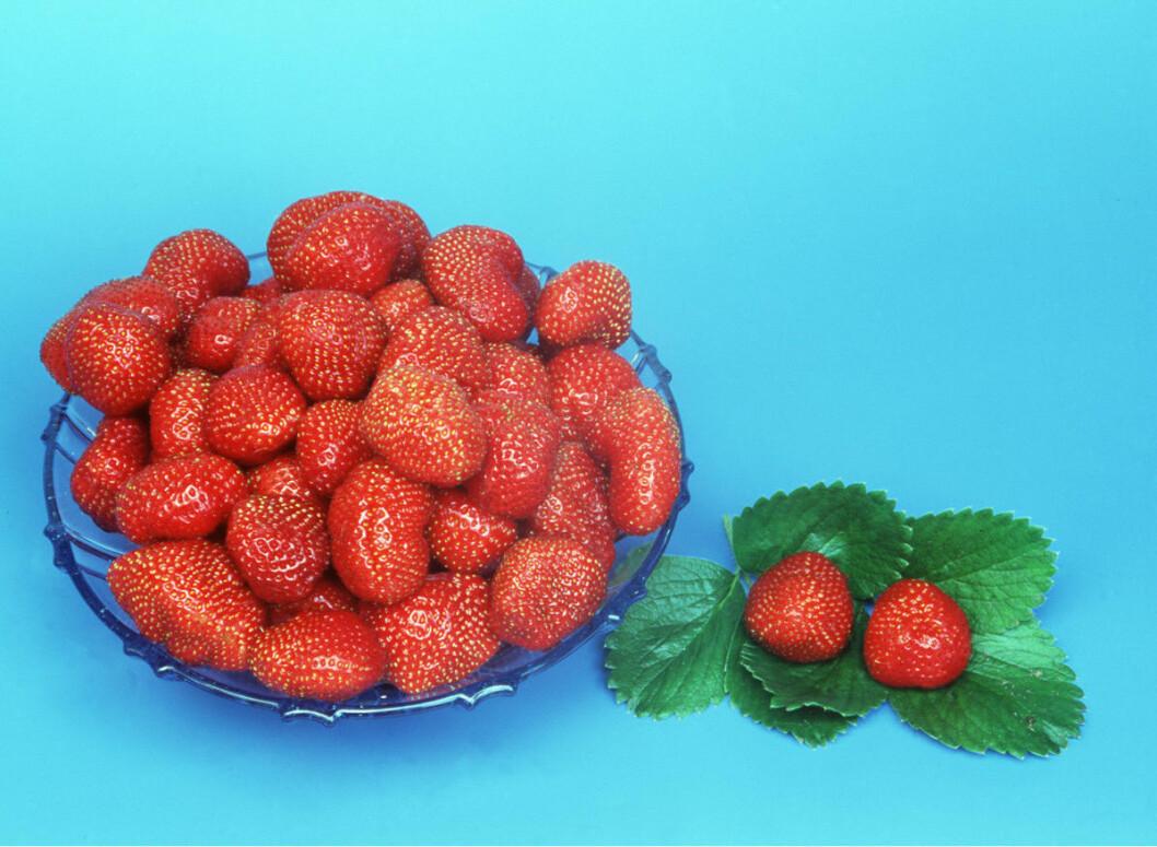 STRAWBERRIES - in bowl
