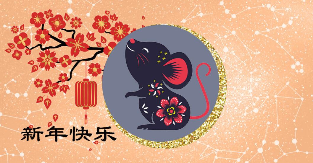 Kinesiska stjärntecken