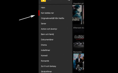 Vuxenfilm Netflix