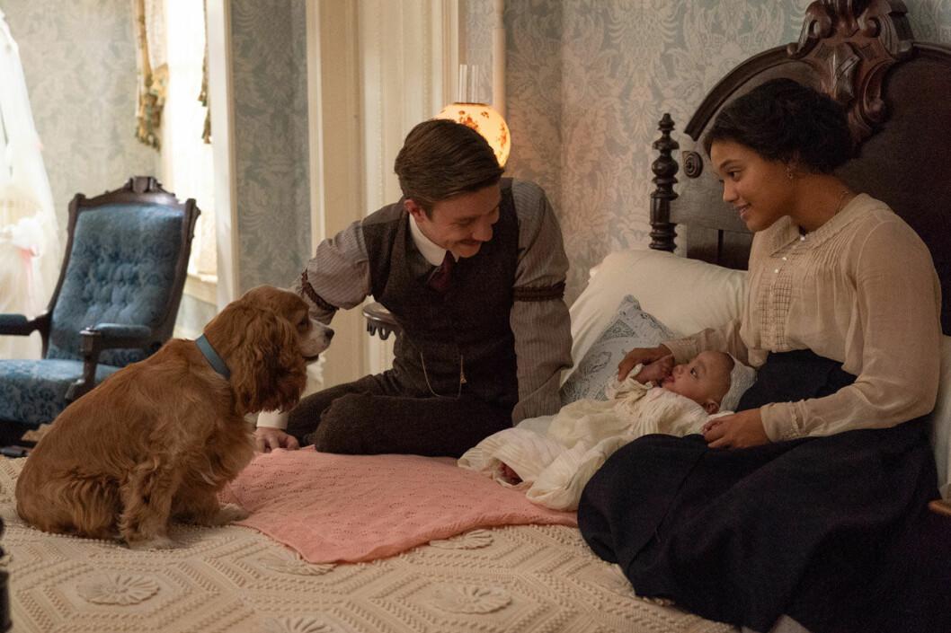 Bild från filmen Lady och Lufsen
