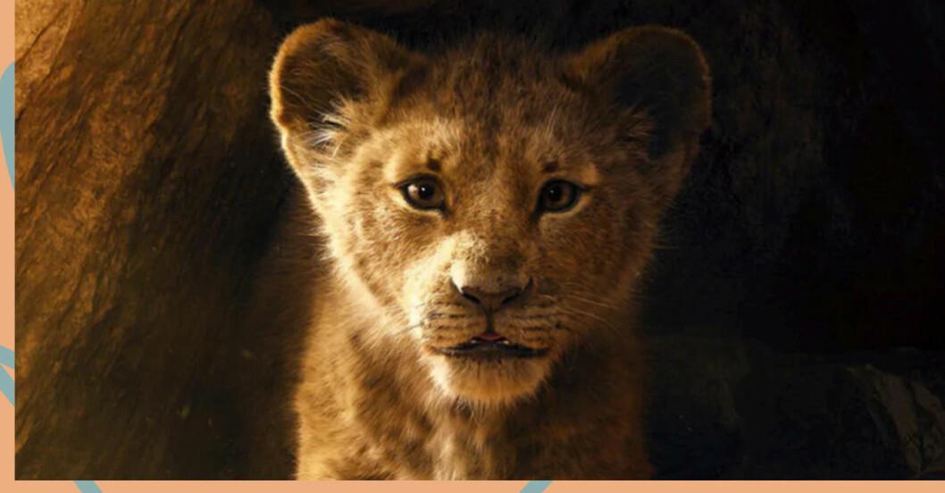 """Nyversionen av """"Lejonkungen"""" från 2019 får en uppföljare, meddelar Disney."""