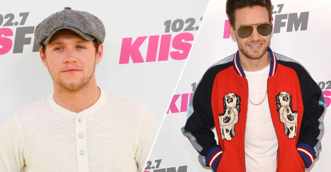 Liam-Payne-Niall-Horan-Reunion