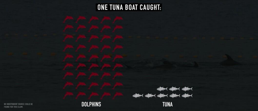 På ett fiskefartyg hade 45 delfiner dödats för att fiska 8 tonfiskar.