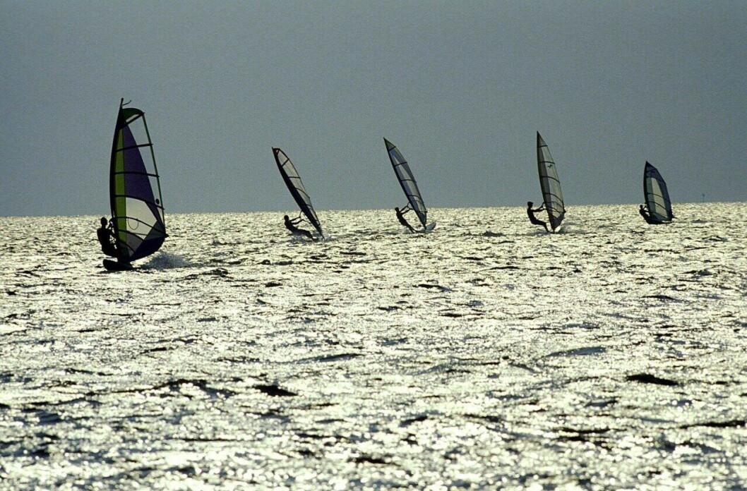 vindsurfare som surfar på vattnet