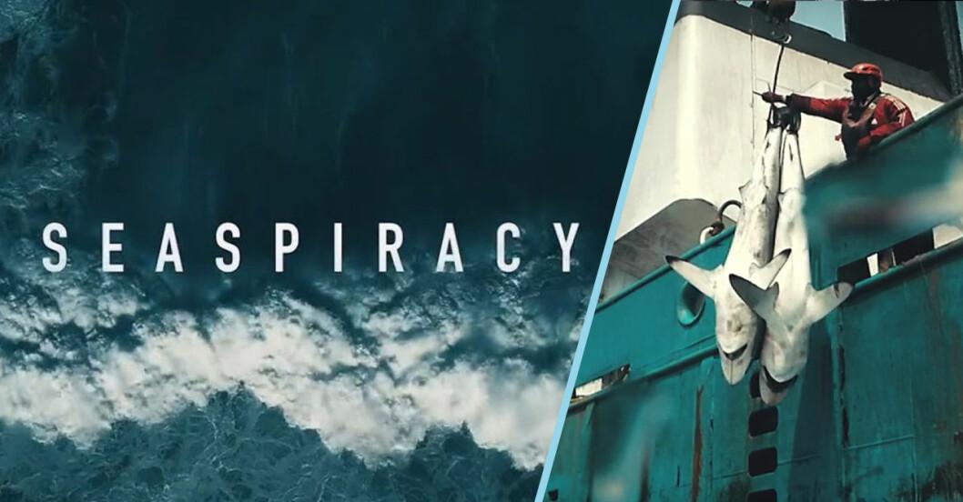 Lärdomar från dokumentären Seaspiracy på Netflix