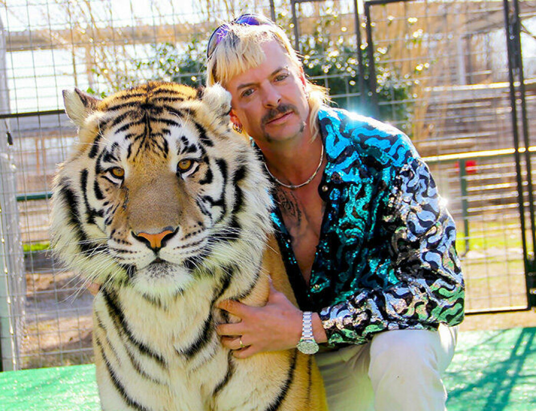 En bild på Joe Exotic i tv-serien Tiger King på Netflix.