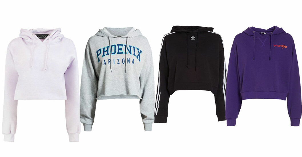 trendiga-hoodies-host-2018