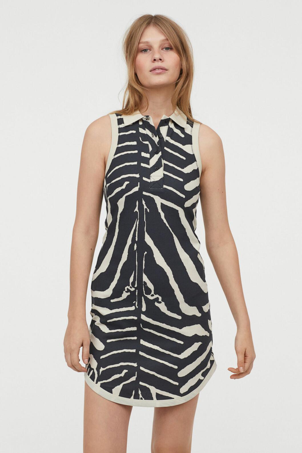 Zebramönstrad pikéklänning från H&M